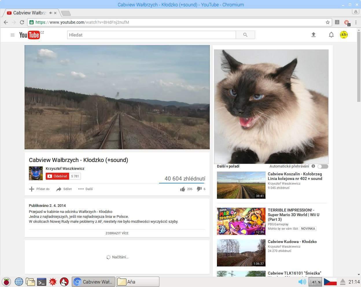 Catblock zase elegantně nahrazuje reklamy za obrázky koček.